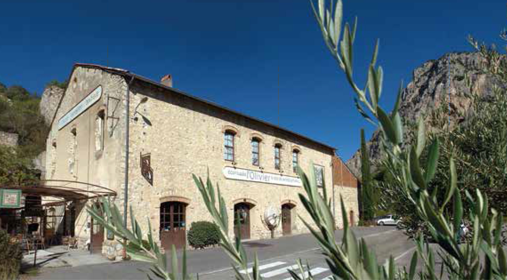 Museum Olive Oil Tasting Maison Bremond 1830